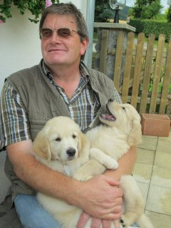 Beautiful male and female Golden Retriever Puppies for adoption