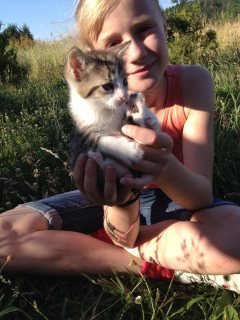 Well Socialized F1 and F2 Savannah Kittens Available