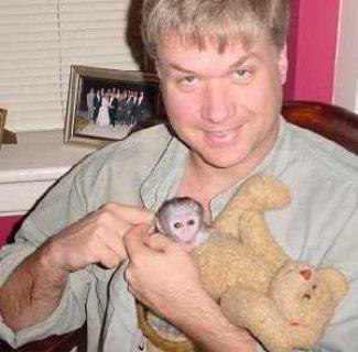 Two Capuchin Monkeys for sale